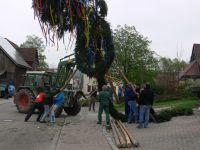 2013-04-30 TTC Maibaumstellen 015
